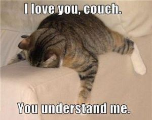 couchunderstands
